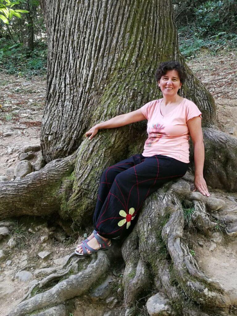 Anaís raíces árbol